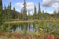 #atlin-macdonald_valley-4771 - A pond in the MacDonald Valley at Atlin, British Columbia