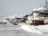 #valdez-boats-insnow-5821 - Boats in the snow at Valdez, Alaska